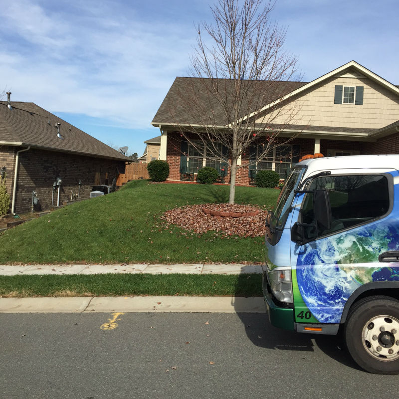Local Lawn Care & Expertise